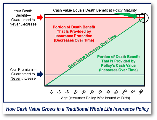 How Cash Value Grows in a Traditional Whole Life Insurance Policy