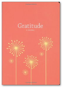 Buy Catherine Price's book, Gratitude: A Novel