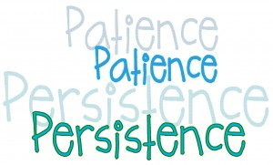 patience persistence