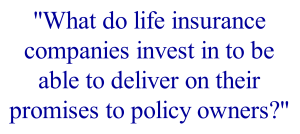 What do life insurance companies invest in to be able to deliver on their promises to policy owners?
